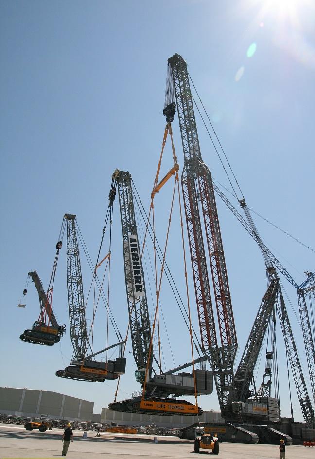 Cranes lifting cranes Resized
